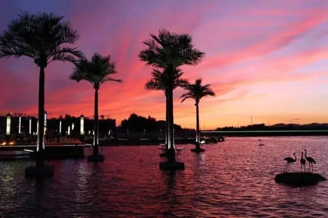 每到夜晚音乐喷泉的开启,湖心岛音乐喷泉,平桥,景观石,天鹅雕塑