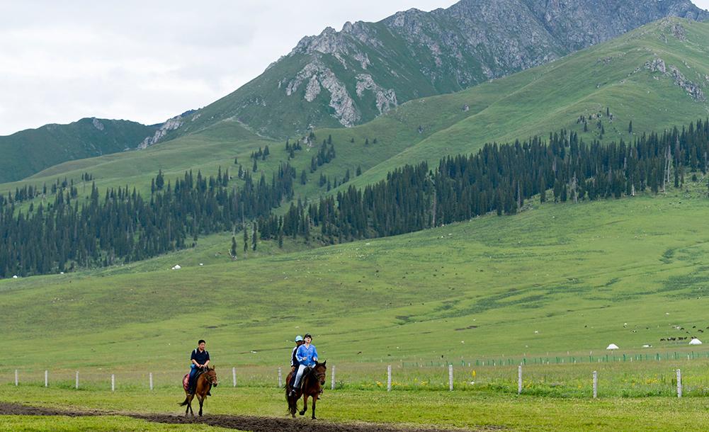"""新疆:马背上的""""生态致富路"""""""