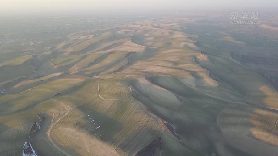 萬畝旱田:大地的調色板