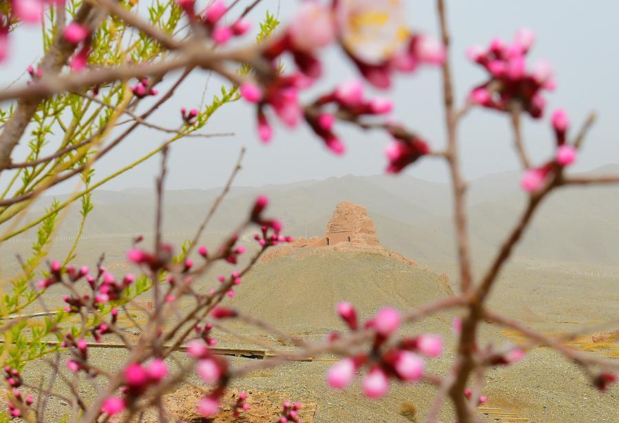 新疆是個好地方|悠悠古剎蘇巴什