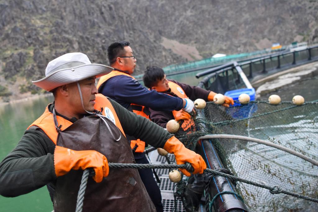 天山深處的漁民